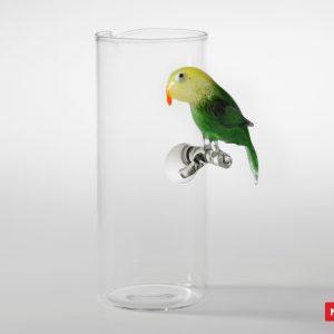 Massimo Lunardon Water Pitcher - Parakeet
