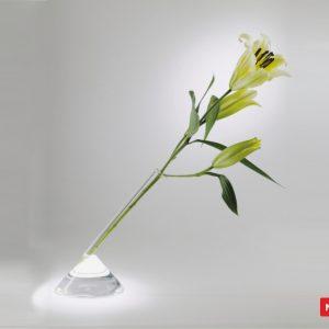 Massimo Lunardon Glass Vase - Ilium